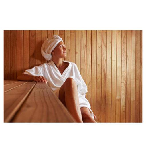 calefactor sauna caliente agua chile spa piscinería relax